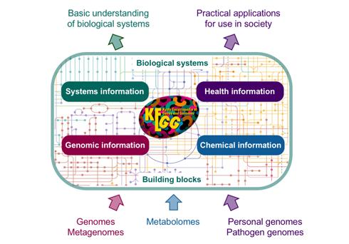 KEGG Overview