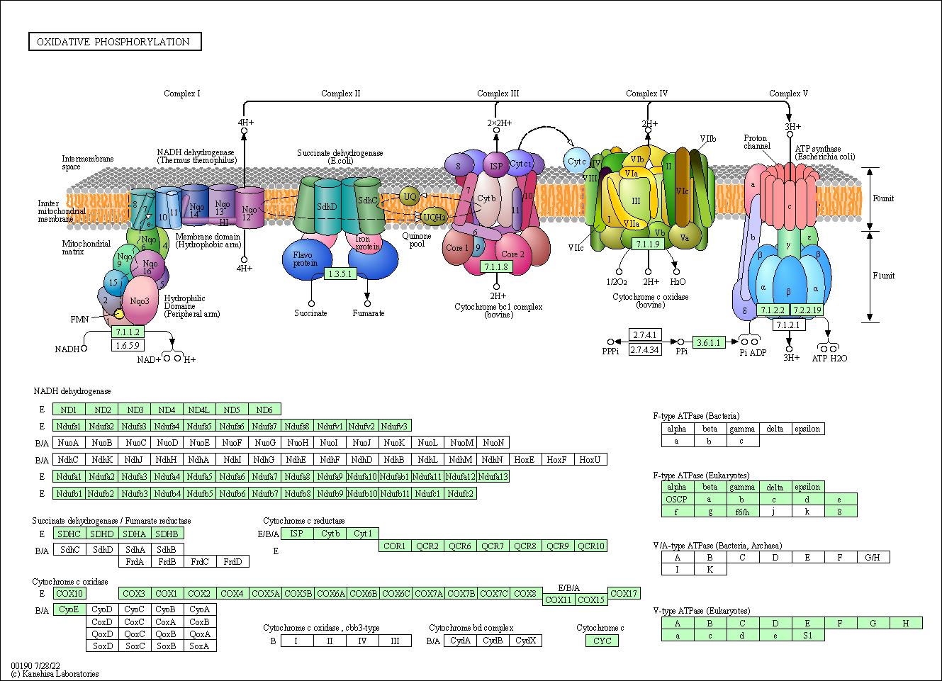 dialogue diagram e0 b8 84 e0 b8 b7 e0 b8 ad wire data schema u2022 rh 45 32 65 24