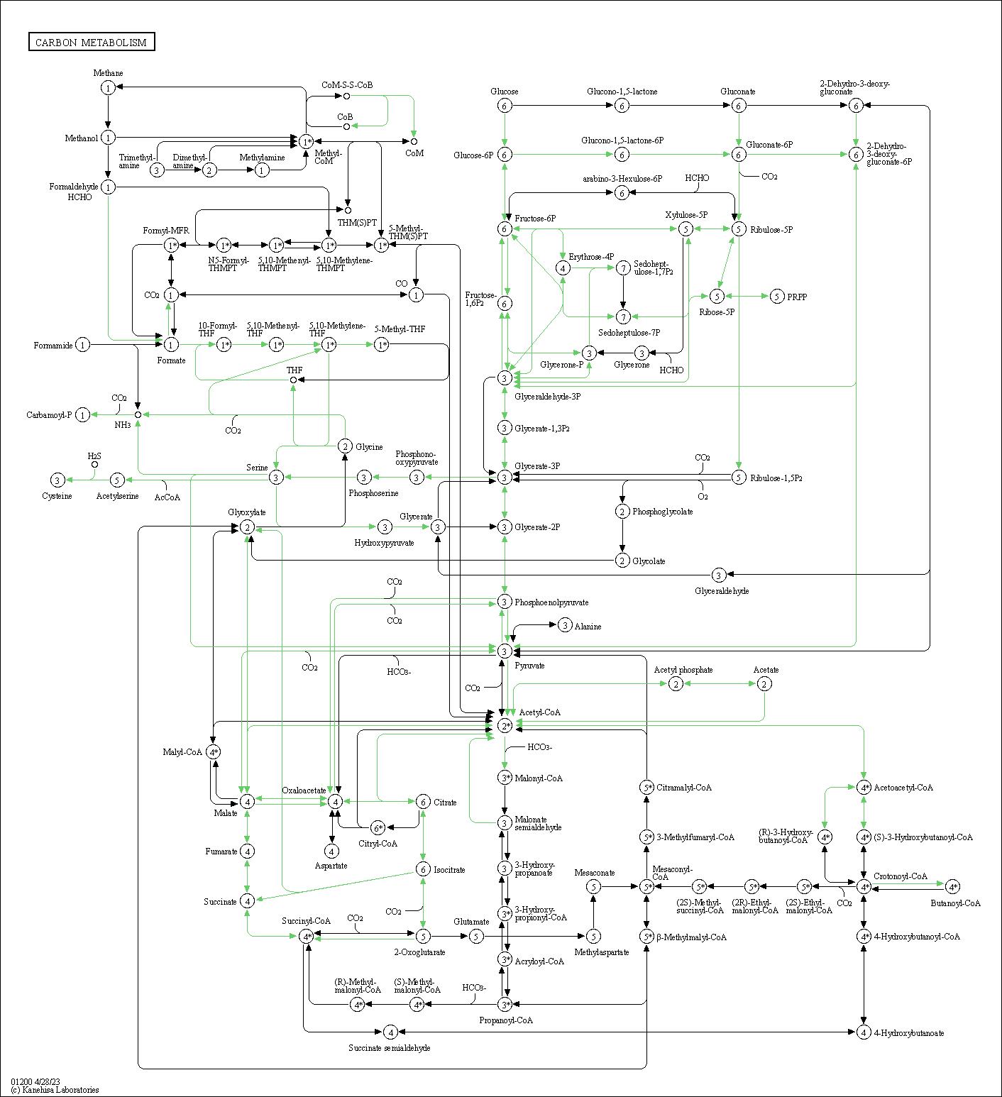 tick diagram broom wiring diagram general Refrigerator Cooling Diagram